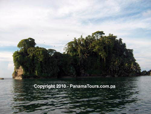 bocas del toro black dating site Local people have gotten used to the unsightly sight of black bags or just throw it in the sea to bocas del toro province, panama more places to stay in.